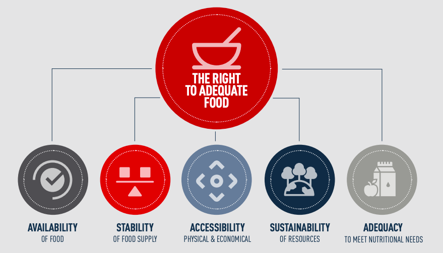 Infographic naming the five conditions that need to be met to achieve the right to adequate nutririon.